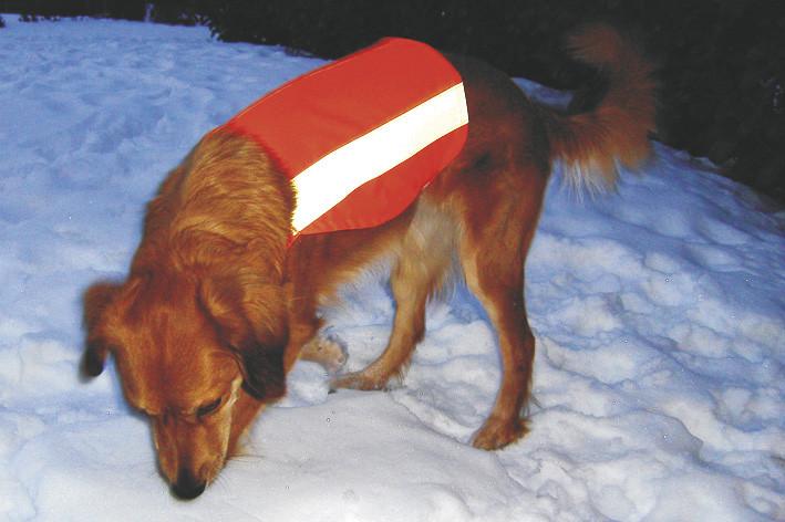 Hunde - Signalweste Größe M